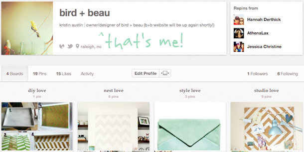 follow bird + beau on pinterest