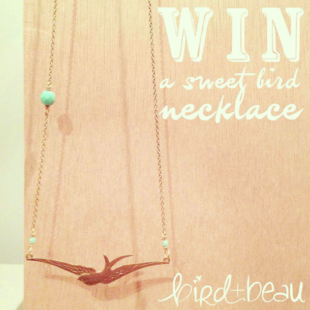 "enter to win bird + beau's ""flight"" necklace giveaway!"