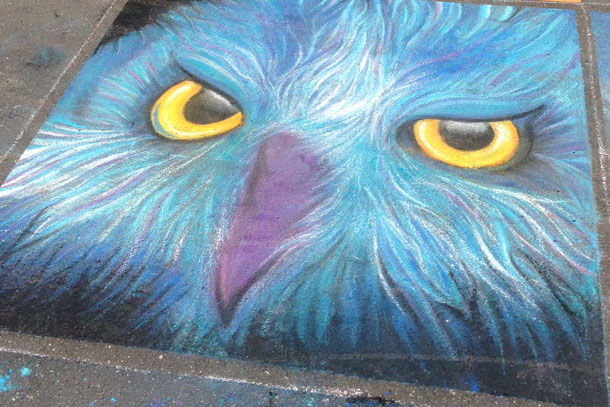 artspark chalk drawing | owl