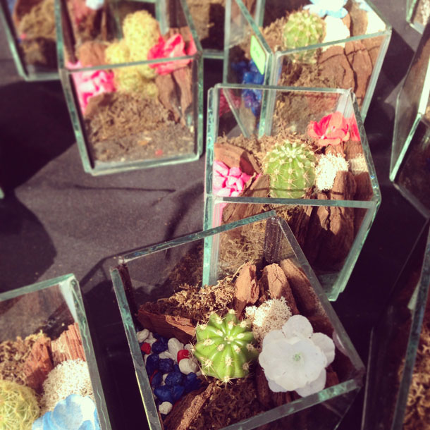 glass terrariums made by local artist