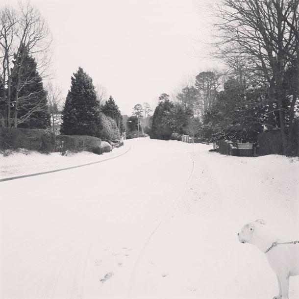 snow day: b